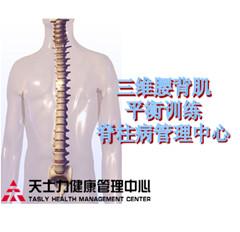 三维腰背肌平衡测评训练
